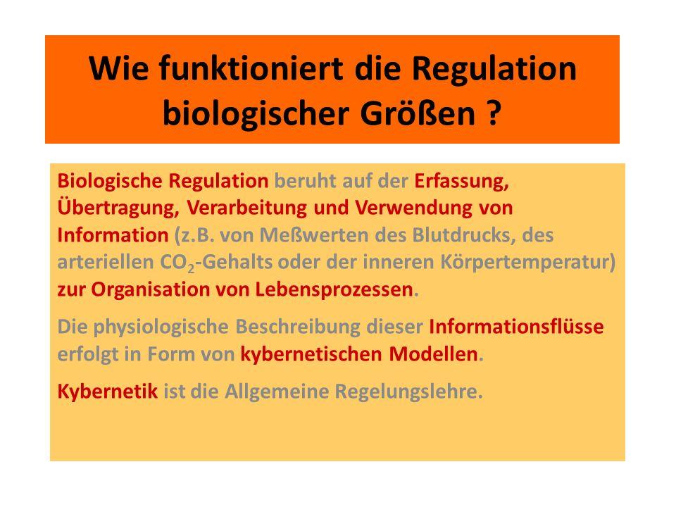 Wie funktioniert die Regulation biologischer Größen