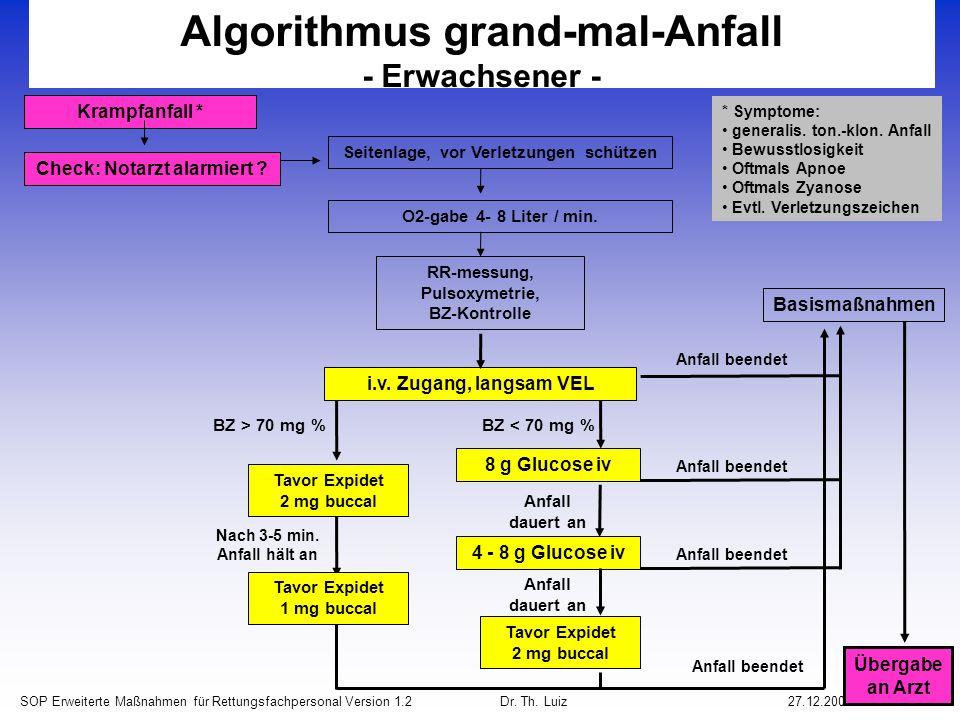 Algorithmus grand-mal-Anfall