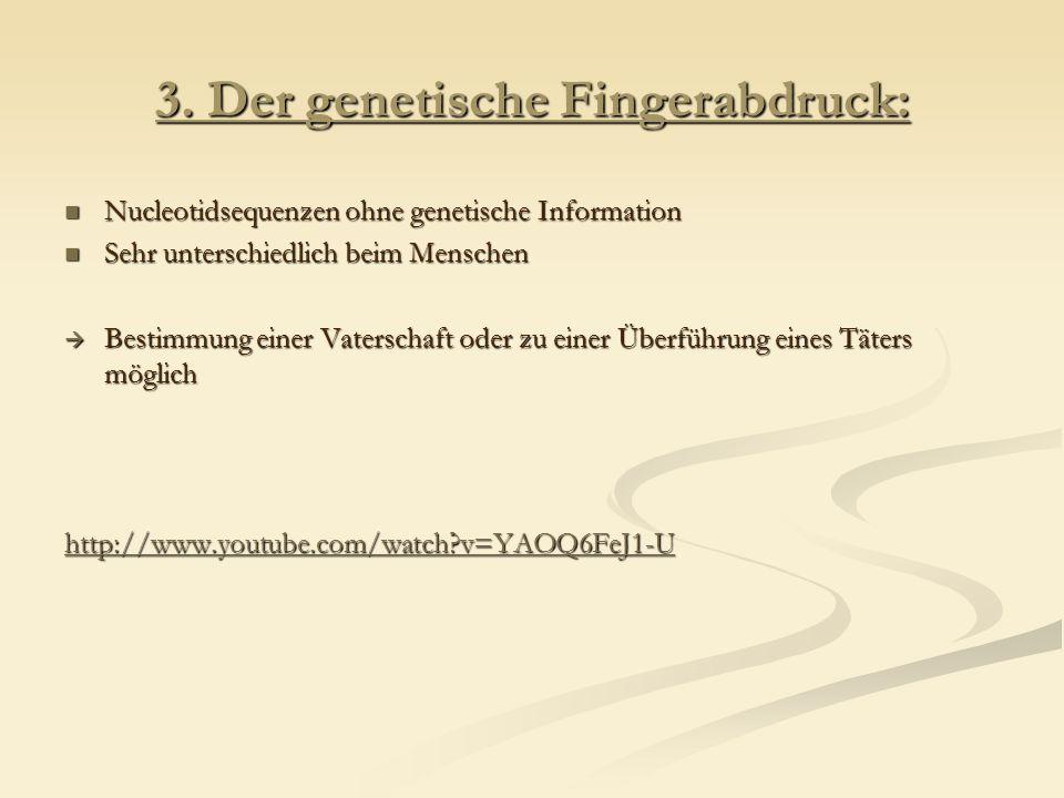 3. Der genetische Fingerabdruck: