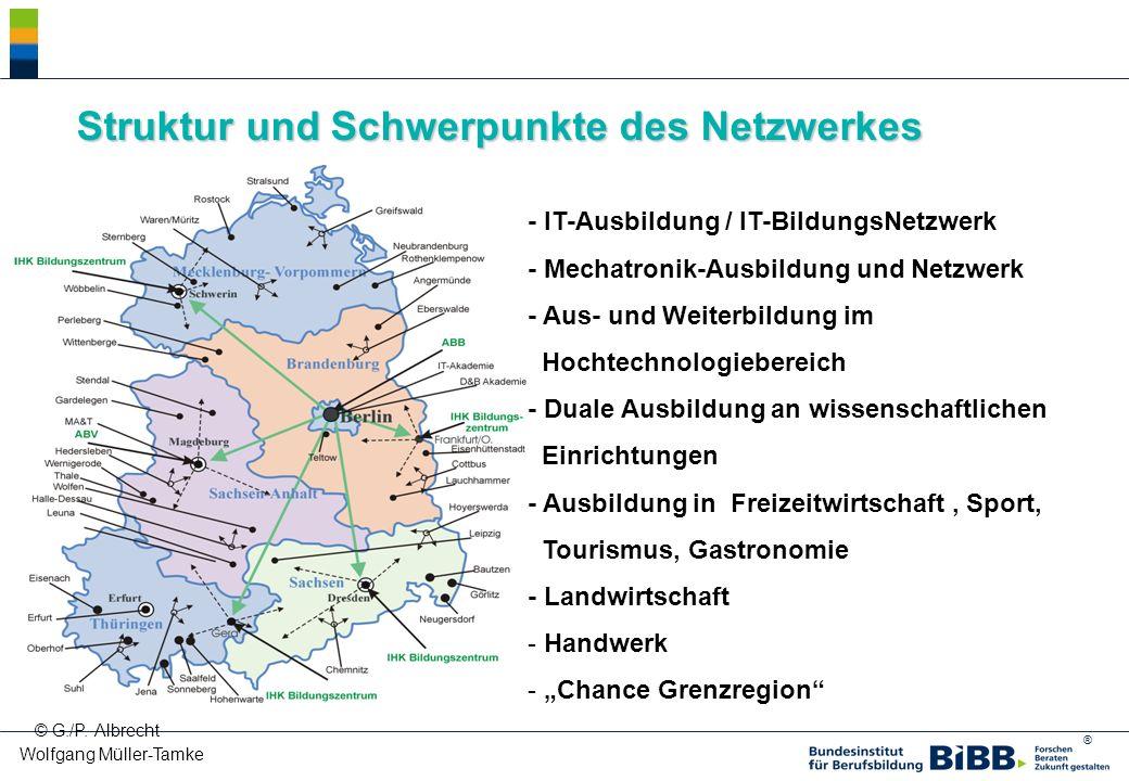 Struktur und Schwerpunkte des Netzwerkes