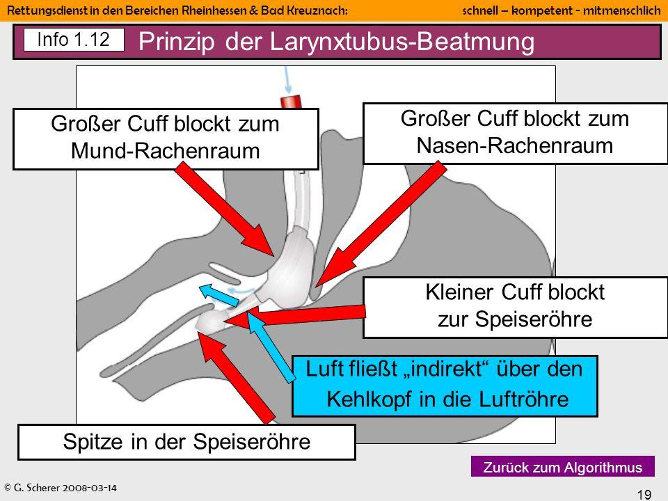 Prinzip der Larynxtubus-Beatmung