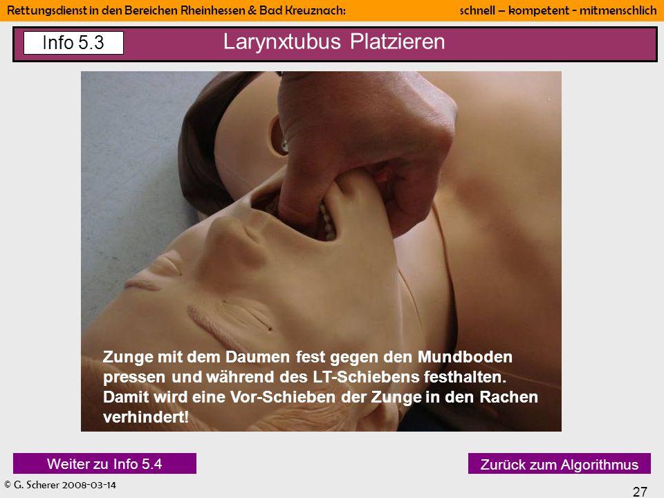 Larynxtubus Platzieren
