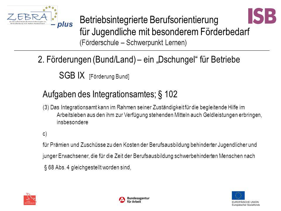 Betriebsintegrierte Berufsorientierung für Jugendliche mit besonderem Förderbedarf (Förderschule – Schwerpunkt Lernen)