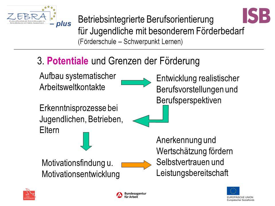 3. Potentiale und Grenzen der Förderung