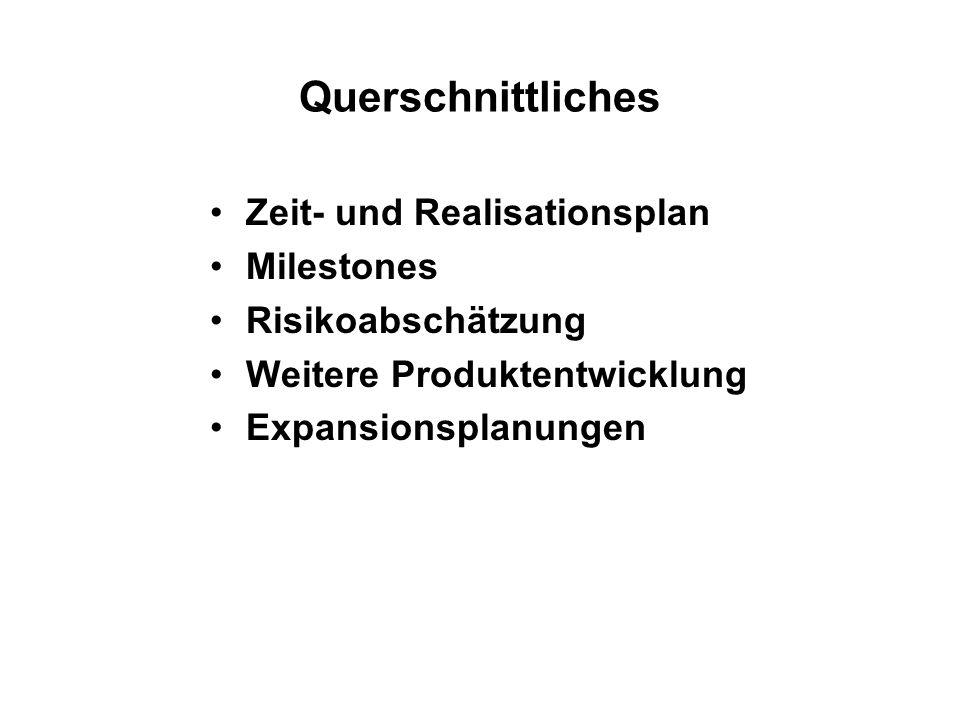 Querschnittliches Zeit- und Realisationsplan Milestones