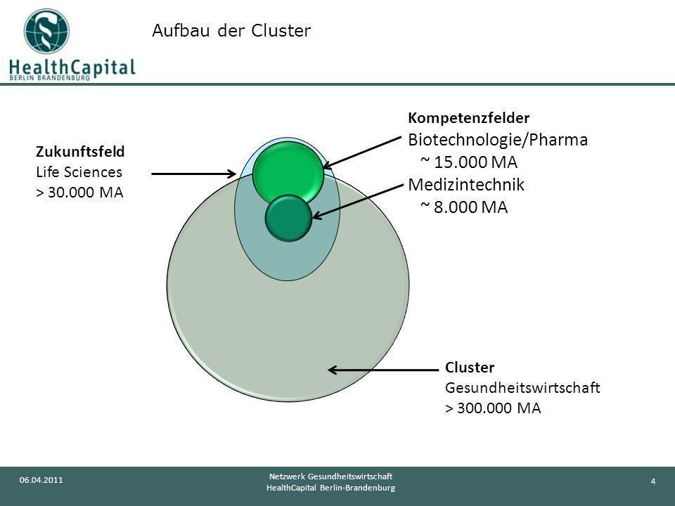 Aufbau der Cluster Cluster Gesundheitswirtschaft > 300.000 MA. Zukunftsfeld Life Sciences > 30.000 MA.