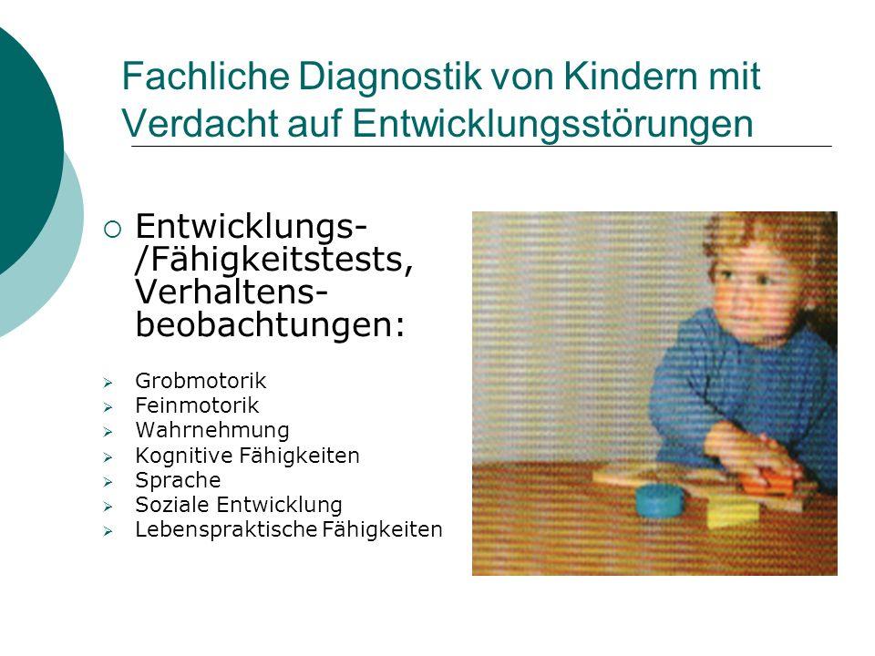 Fachliche Diagnostik von Kindern mit Verdacht auf Entwicklungsstörungen