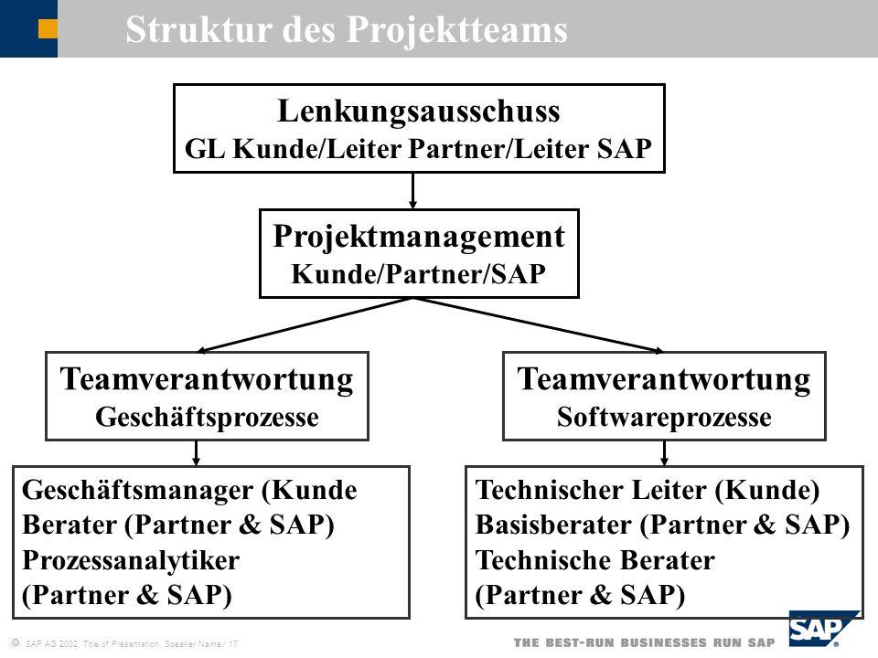 Struktur des Projektteams GL Kunde/Leiter Partner/Leiter SAP