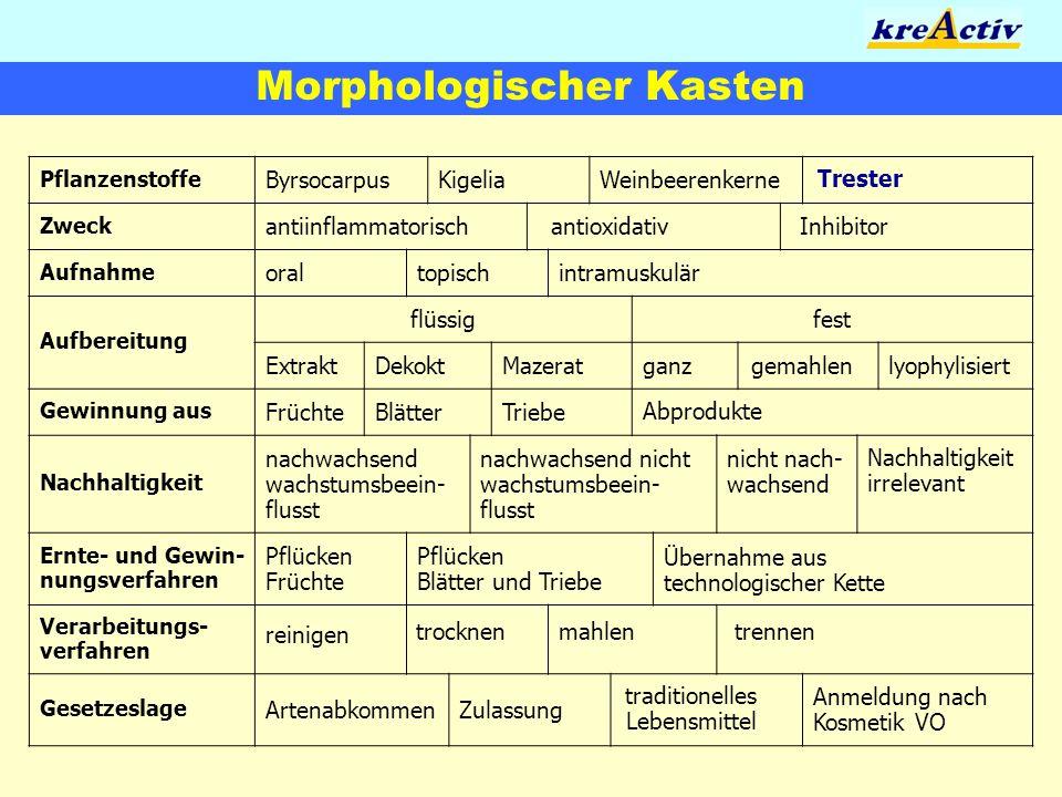 Morphologischer Kasten