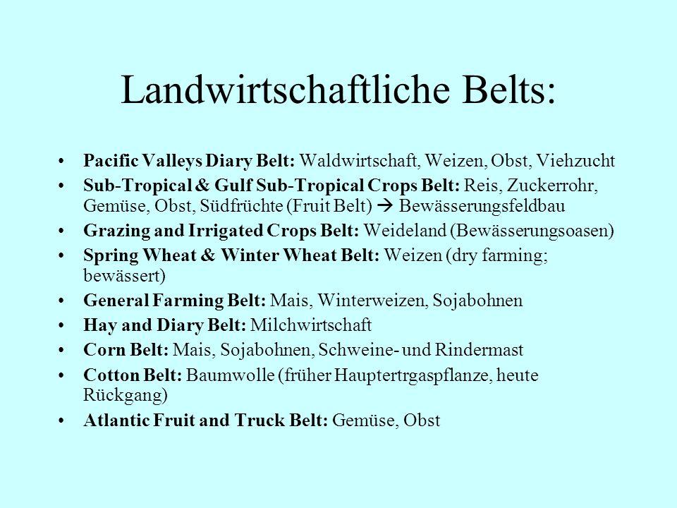 Landwirtschaftliche Belts: