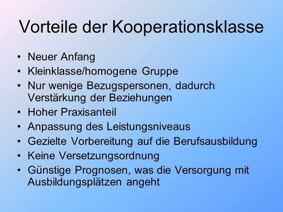 Vorteile der Kooperationsklasse