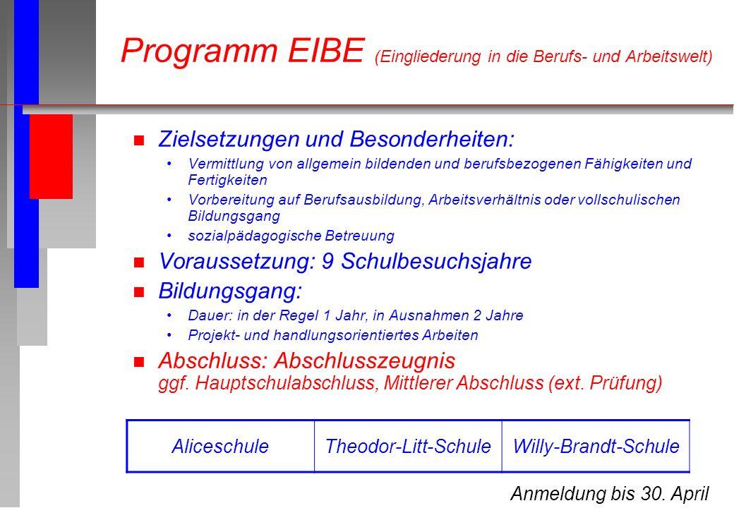 Programm EIBE (Eingliederung in die Berufs- und Arbeitswelt)