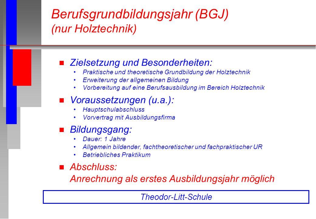 Berufsgrundbildungsjahr (BGJ) (nur Holztechnik)