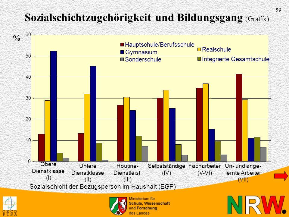 Sozialschichtzugehörigkeit und Bildungsgang (Grafik)