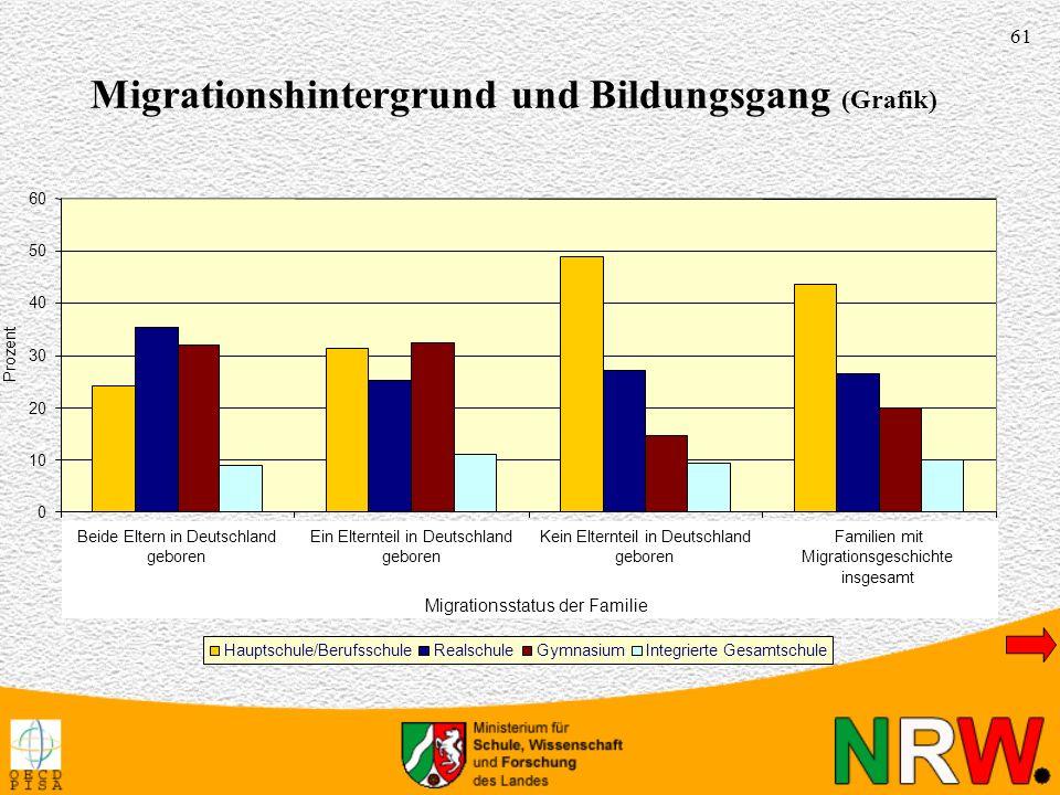 Migrationshintergrund und Bildungsgang (Grafik)
