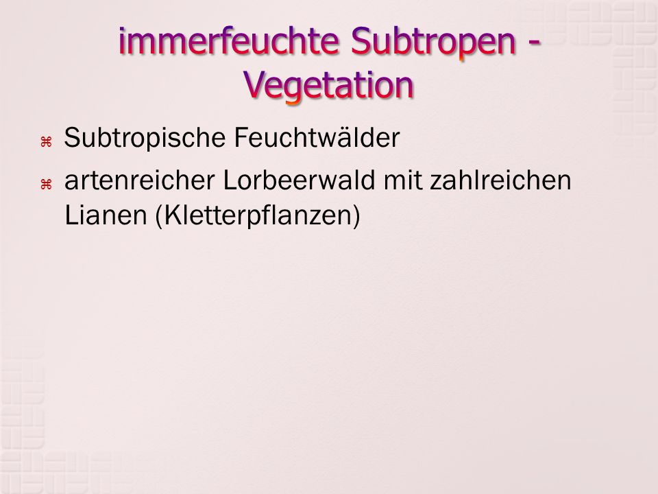 immerfeuchte Subtropen - Vegetation