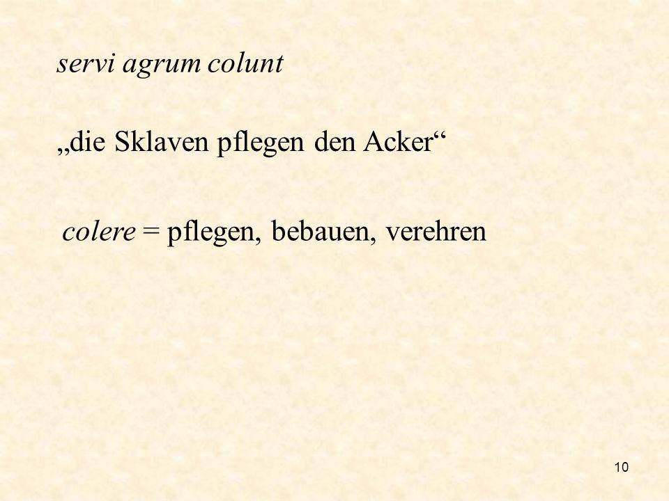 """servi agrum colunt """"die Sklaven pflegen den Acker colere = pflegen, bebauen, verehren"""