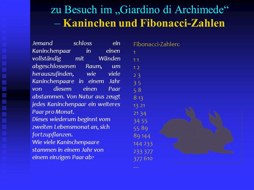 "zu Besuch im ""Giardino di Archimede – Kaninchen und Fibonacci-Zahlen"