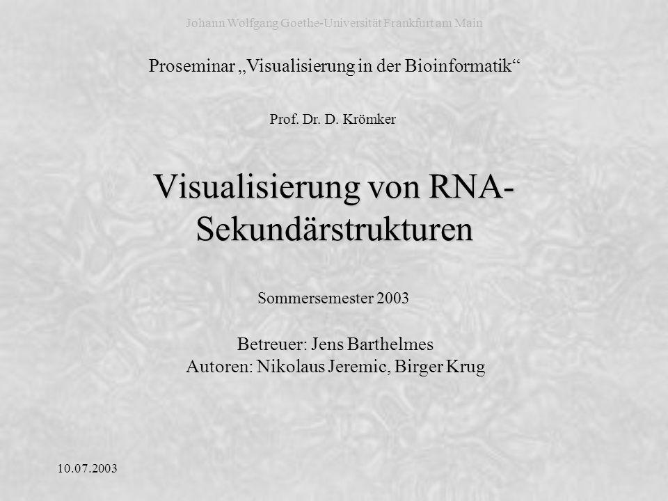 Visualisierung von RNA-Sekundärstrukturen