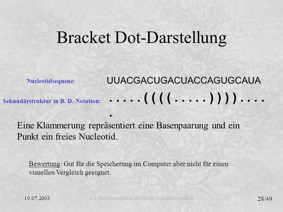 Bracket Dot-Darstellung