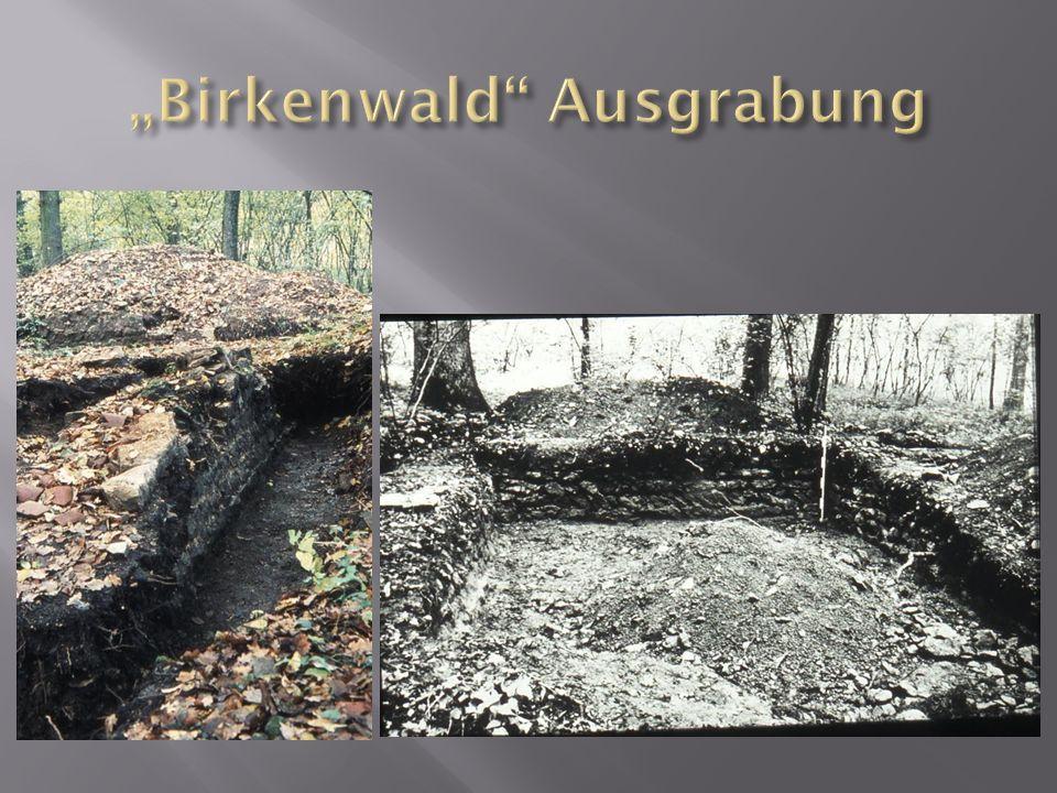 """""""Birkenwald Ausgrabung"""