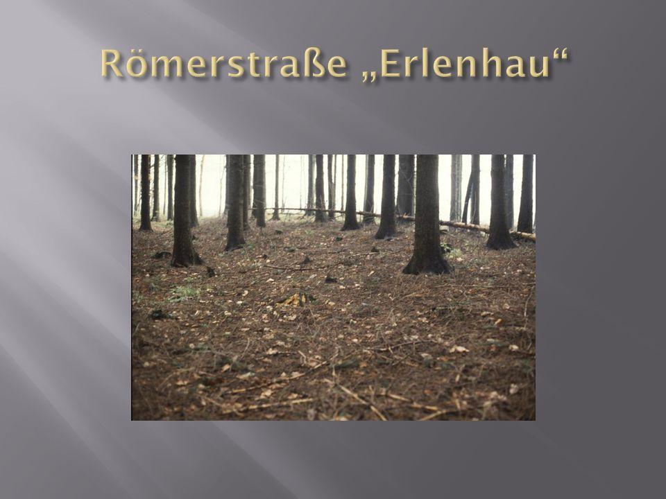 "Römerstraße ""Erlenhau"