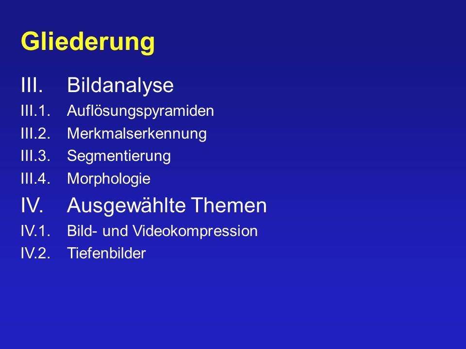 Gliederung III. Bildanalyse IV. Ausgewählte Themen