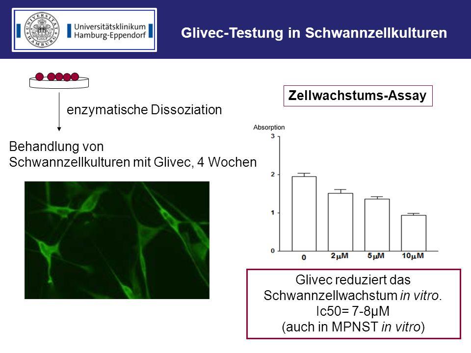Glivec-Testung in Schwannzellkulturen