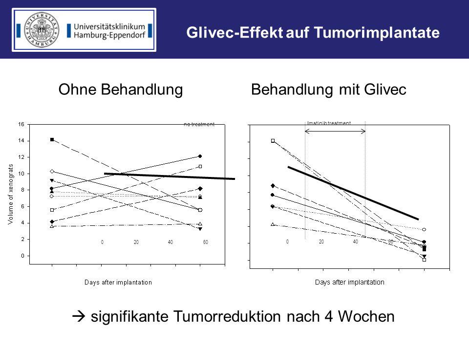 Glivec-Effekt auf Tumorimplantate