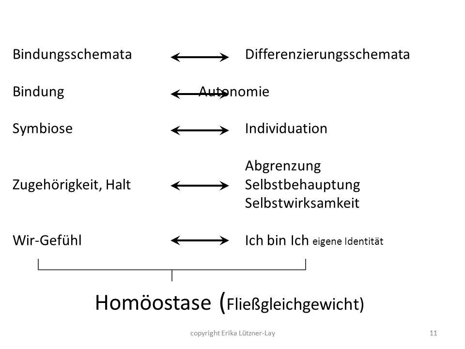 Homöostase (Fließgleichgewicht)