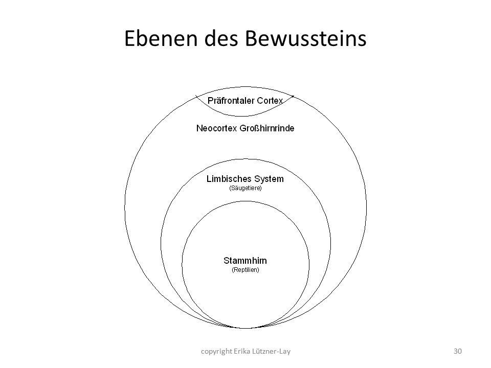 Ebenen des Bewussteins