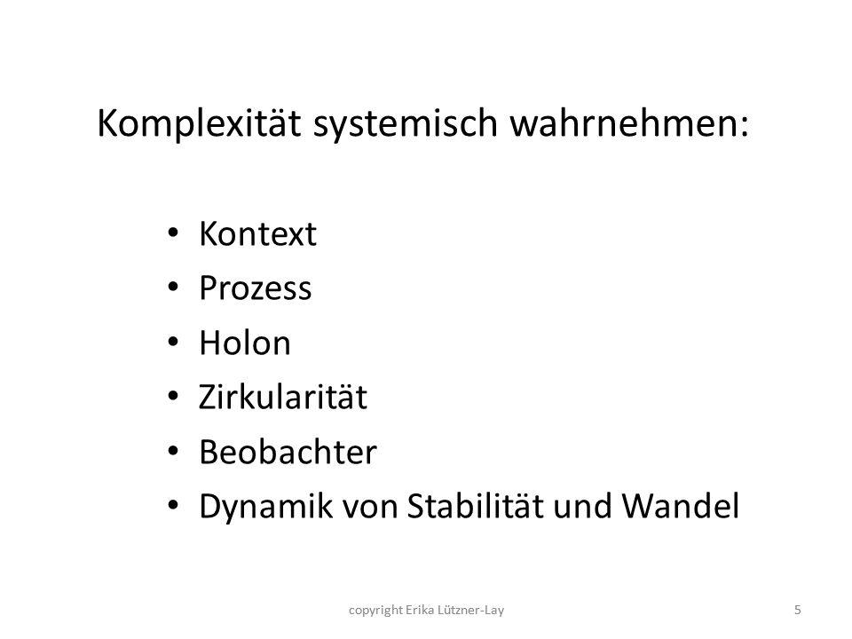 Komplexität systemisch wahrnehmen: