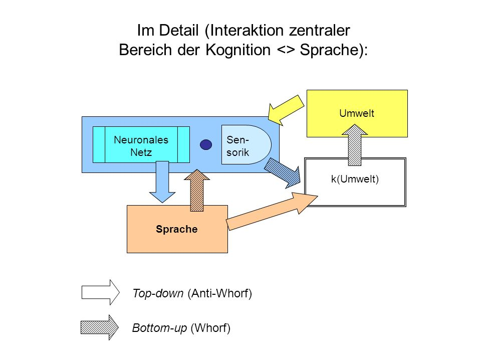 Im Detail (Interaktion zentraler