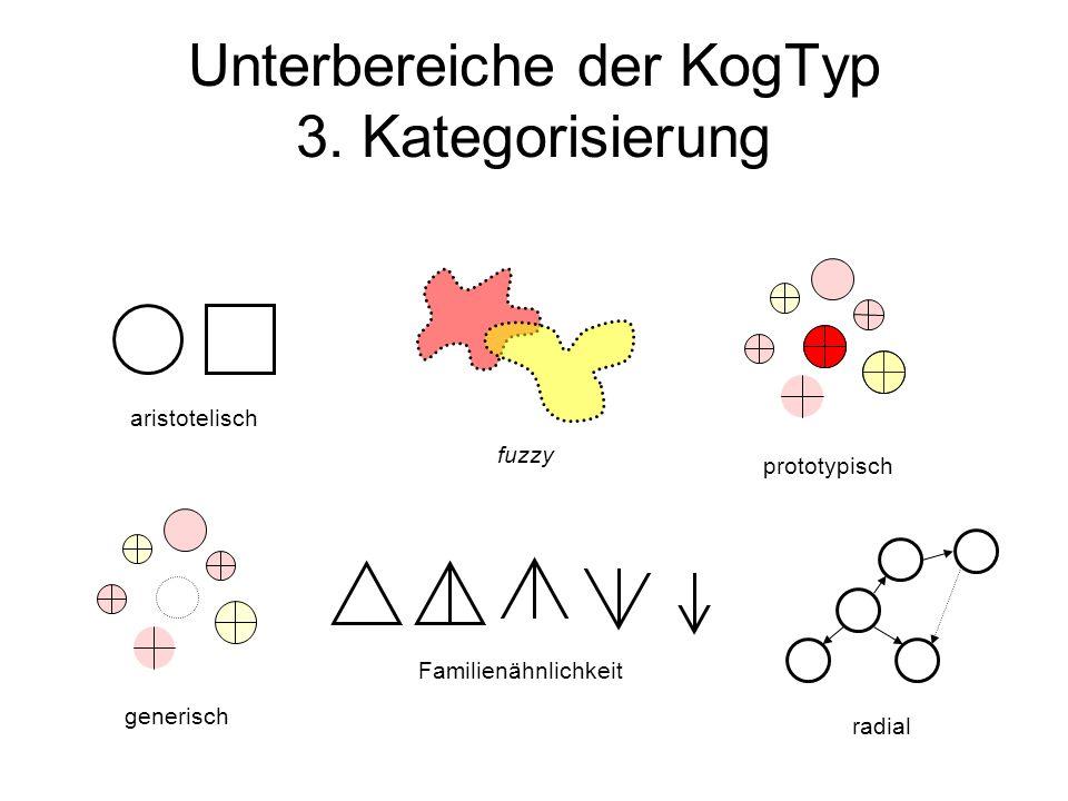 Unterbereiche der KogTyp 3. Kategorisierung
