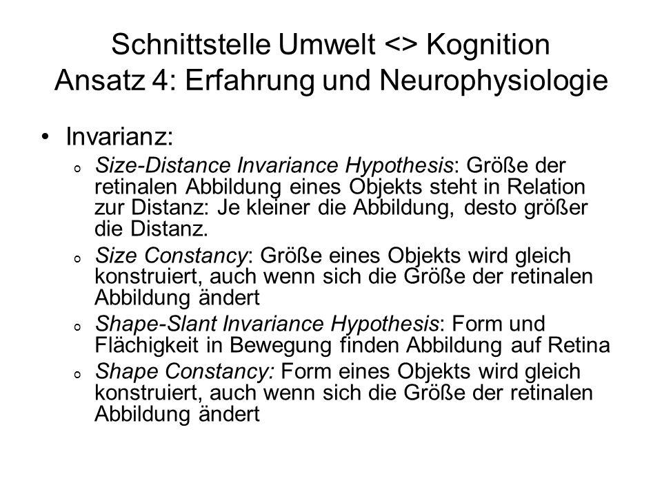 Schnittstelle Umwelt <> Kognition Ansatz 4: Erfahrung und Neurophysiologie