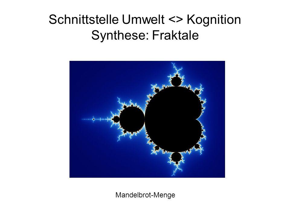 Schnittstelle Umwelt <> Kognition Synthese: Fraktale