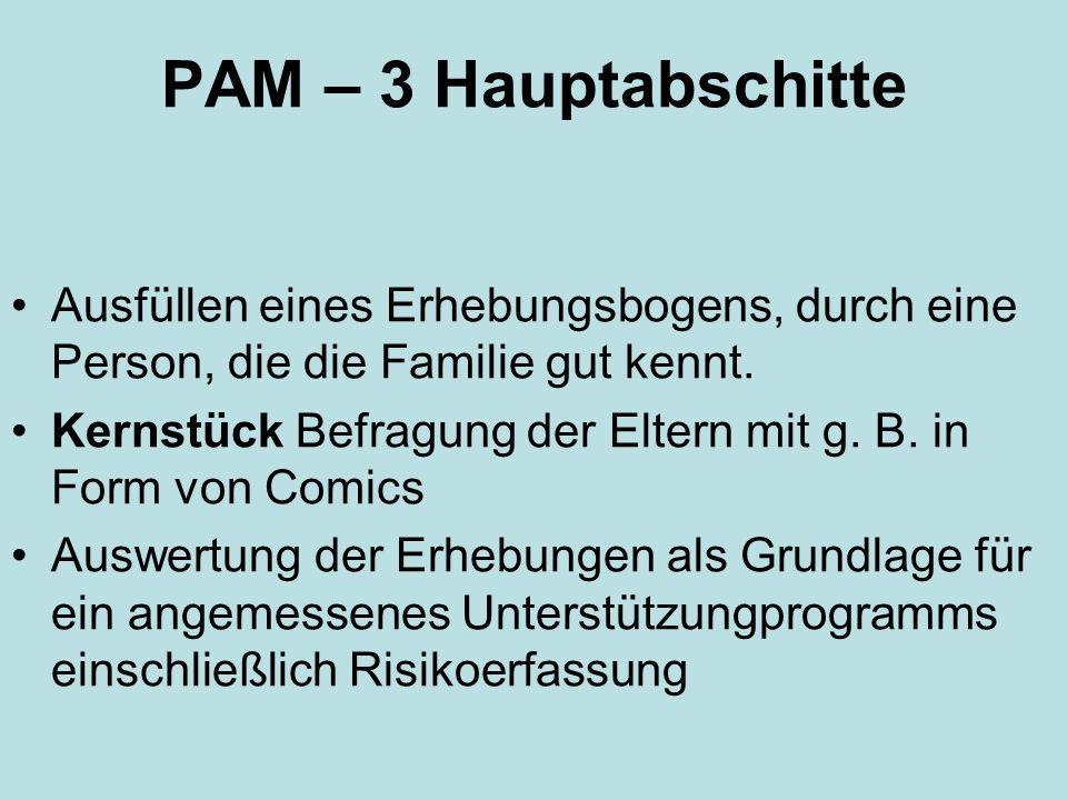 PAM – 3 Hauptabschitte Ausfüllen eines Erhebungsbogens, durch eine Person, die die Familie gut kennt.