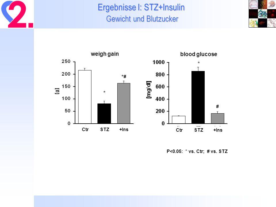 Ergebnisse I: STZ+Insulin Gewicht und Blutzucker