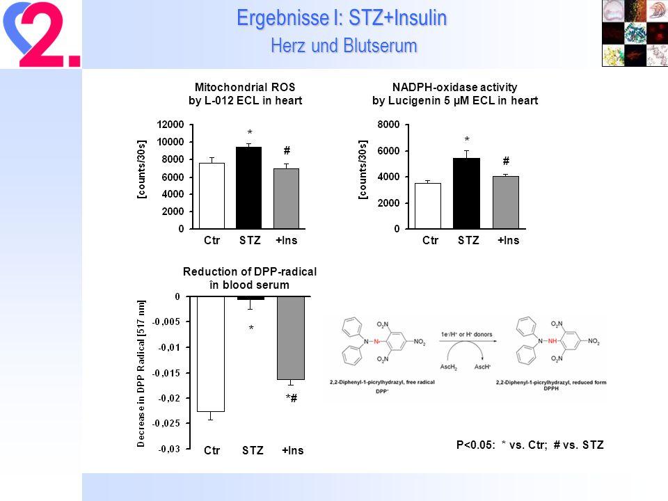 Ergebnisse I: STZ+Insulin Herz und Blutserum