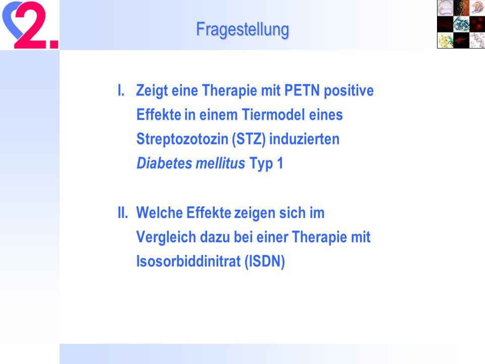 Fragestellung I. Zeigt eine Therapie mit PETN positive Effekte in einem Tiermodel eines Streptozotozin (STZ) induzierten Diabetes mellitus Typ 1.