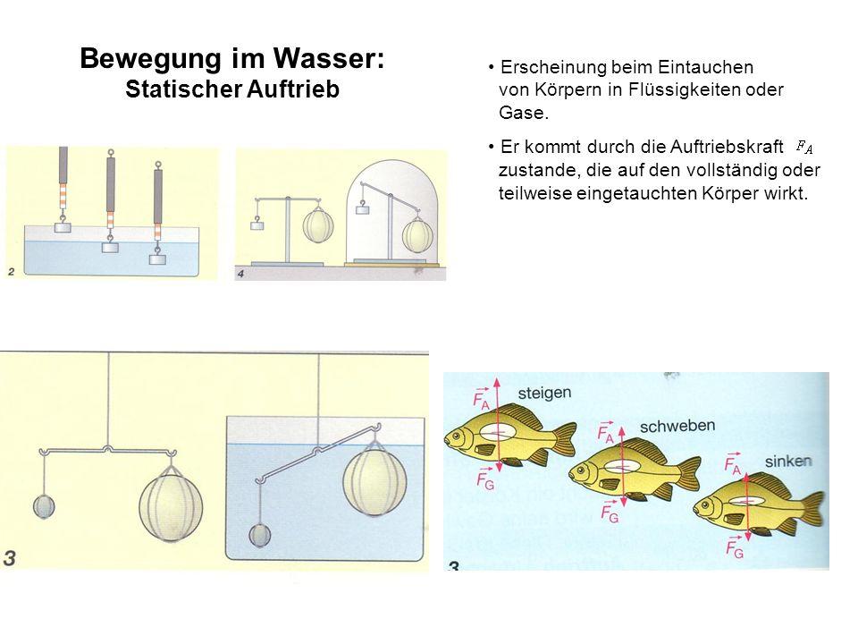 Bewegung im Wasser: Statischer Auftrieb
