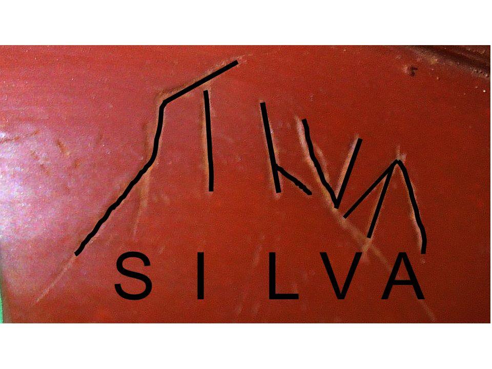 S I L V A