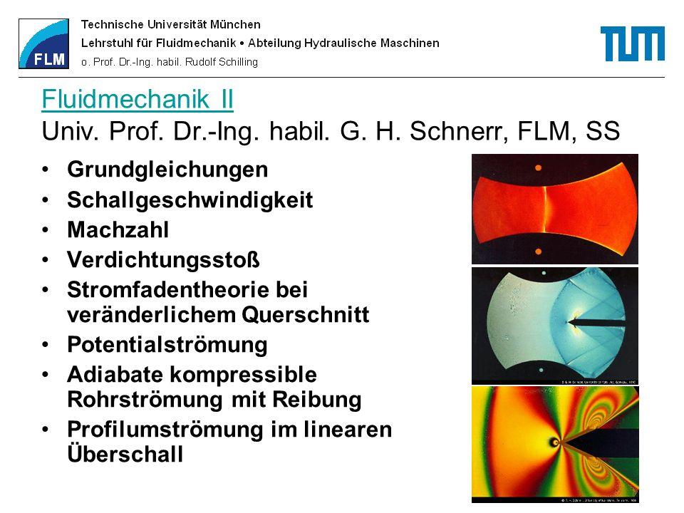 Fluidmechanik II Univ. Prof. Dr.-Ing. habil. G. H. Schnerr, FLM, SS