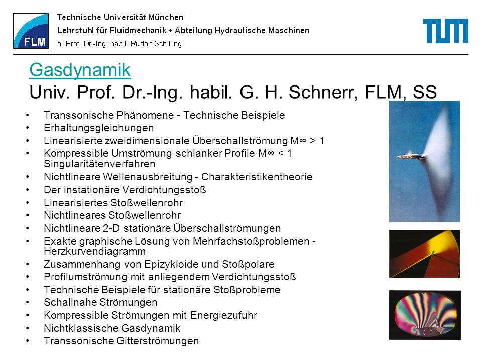 Gasdynamik Univ. Prof. Dr.-Ing. habil. G. H. Schnerr, FLM, SS