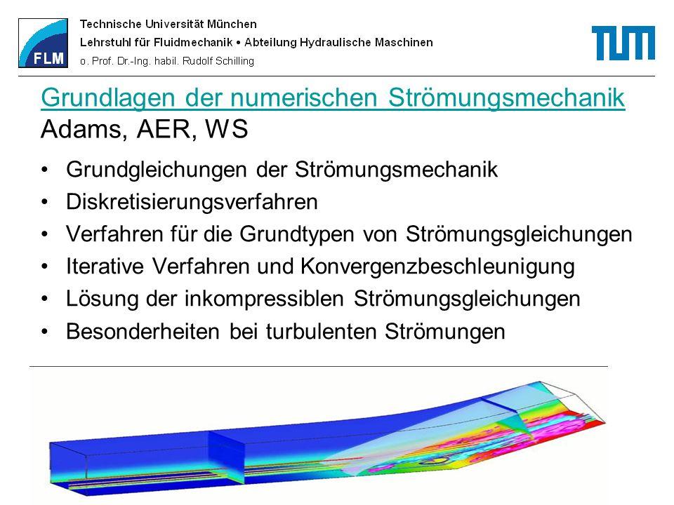 Grundlagen der numerischen Strömungsmechanik Adams, AER, WS