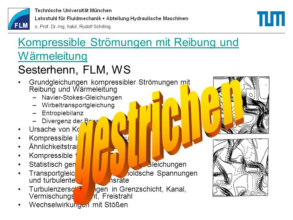 Kompressible Strömungen mit Reibung und Wärmeleitung Sesterhenn, FLM, WS