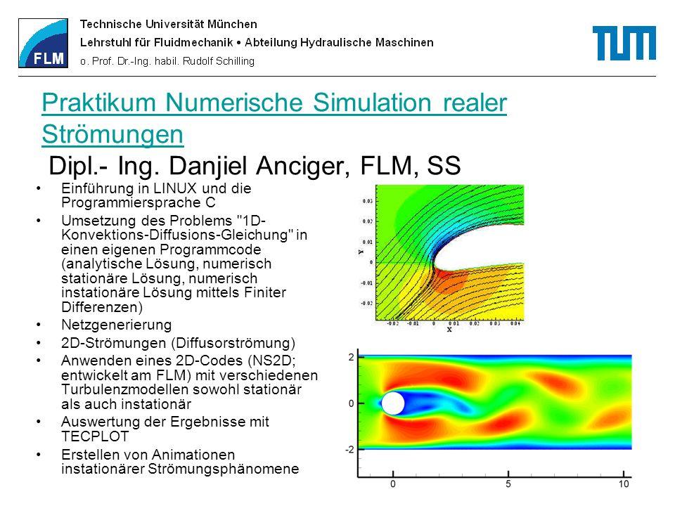 Praktikum Numerische Simulation realer Strömungen Dipl. - Ing