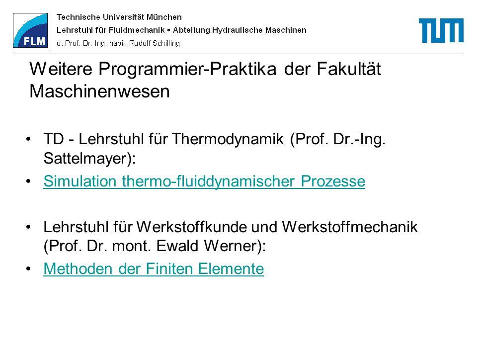 Weitere Programmier-Praktika der Fakultät Maschinenwesen
