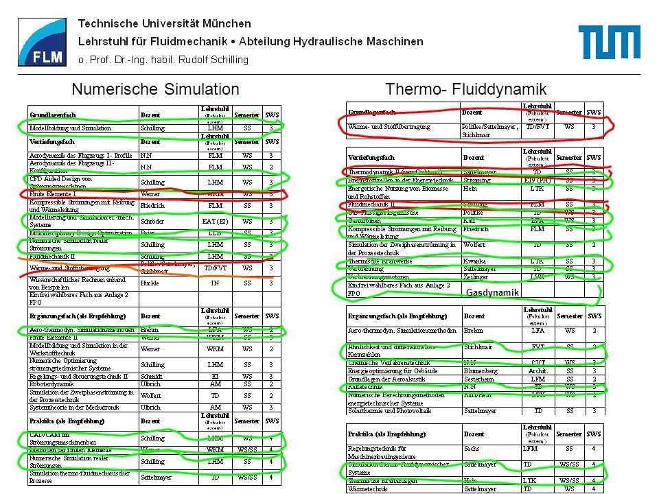 Numerische Simulation Thermo- Fluiddynamik