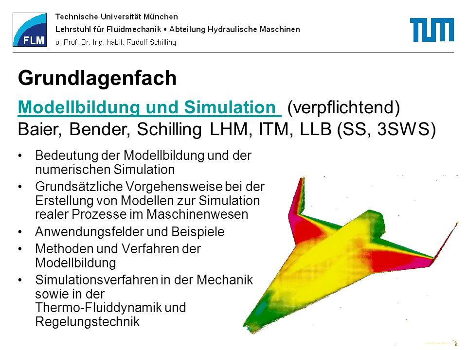 Grundlagenfach Modellbildung und Simulation (verpflichtend)